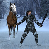 De Ridder van de winter Royalty-vrije Stock Foto's