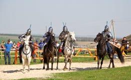 De ridders vechten Stock Afbeelding