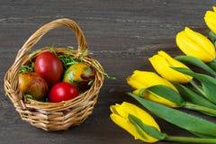 De rieten mand van Pasen met gekleurde eieren en gele tulpen op grijze houten raad Stock Afbeelding