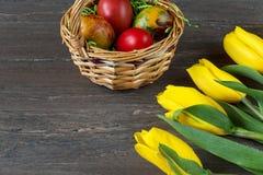De rieten mand van Pasen met gekleurde eieren en gele tulpen op grijze houten raad Stock Afbeeldingen