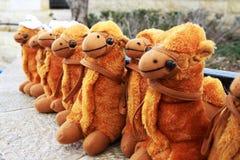 De rij van kamelen Stock Foto
