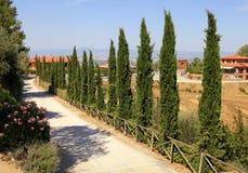 De rijen van cipresbomen en een landweg, Toscanië, Italië stock foto's