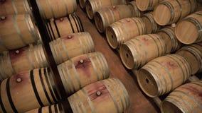De rijen van Eiken Vat in Wijn houden Kelder stand stock videobeelden