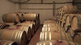 De rijen van Eiken Vat in Wijn houden Kelder stand stock video