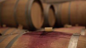 De rijen van Eiken Vat in Wijn houden Kelder stand stock footage