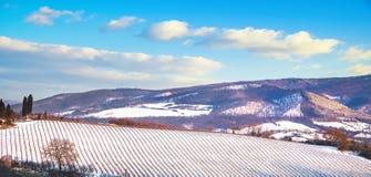 De rijen van wijngaarden door sneeuw in de winter worden behandeld die Chianti, Siena, Italië royalty-vrije stock fotografie