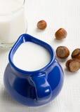 De rijke producten van het calcium Royalty-vrije Stock Foto
