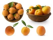 De rijpe abrikozen isoleren op een wit Twee die kommen met abrikozen met bladeren op witte achtergrond worden geïsoleerd Rijpe ab stock afbeeldingen