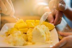 De rijpe mango's worden met de hand geplukt door dames en overlappingsjongens royalty-vrije stock fotografie