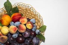 De rijpe perziken en de pruimen zijn in een kleine mand Stock Foto