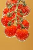 De rijpe Rode Tomaten van de Kers stock afbeeldingen