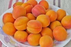 De rijpe sappige abrikozen sluiten omhoog stock fotografie