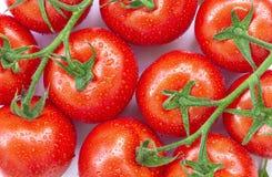 De rijpe tomaten met water laat vallen 1 Stock Afbeeldingen