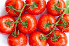 De rijpe tomaten met water laat vallen 4 Royalty-vrije Stock Foto's