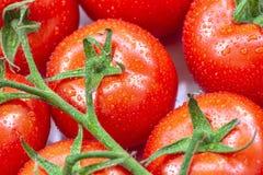 De rijpe tomaten met water laat vallen 7 Royalty-vrije Stock Afbeelding