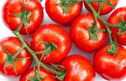 De rijpe tomaten met water laat vallen 10 Royalty-vrije Stock Afbeeldingen