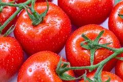 De rijpe tomaten met water laat vallen 9 Royalty-vrije Stock Foto's