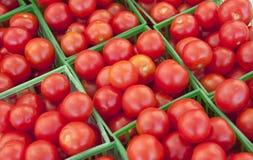 De rijpe Tomaten van de Kers Stock Foto
