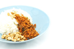De rijst en de gebraden tofu pinda's kijken als knapperige katvisvegetariër Royalty-vrije Stock Afbeelding
