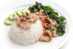 De rijst met varkensvlees braadde met zoete basilicum en Spaanse pepersaus op witte plaat Royalty-vrije Stock Fotografie