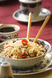De rijst van deegwaren Royalty-vrije Stock Afbeelding