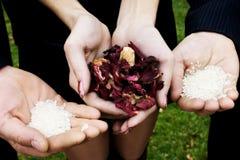 De rijst van het huwelijk en bloemblaadjes van kleuren in handen Stock Foto's