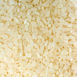 De rijst van sushi Royalty-vrije Stock Foto