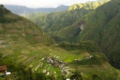 De rijstterrassen van Batad Stock Afbeelding