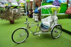 De riksja's van de fiets in de tuin Stock Afbeelding