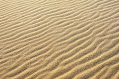 De rimpelingen in het zand leiden tot patronen en texturen in de zandduinen stock afbeeldingen