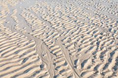 De rimpelingen van het zand op het strand Stock Fotografie