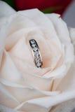 De ring en nam toe royalty-vrije stock afbeeldingen