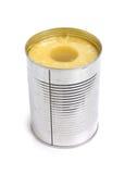 De ring van de ananas in tin Royalty-vrije Stock Foto's