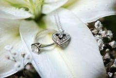 De Ring van de diamant Stock Foto's