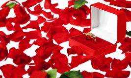 De Ring van de diamant in een Geval van Juwelen op Roze Bloemblaadjes Stock Foto