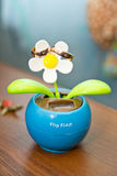 De ringen op de bloemen, in een doos, op een witte stof op speelgoed, kleuren, huwelijksdetails, trouwringen Royalty-vrije Stock Foto's