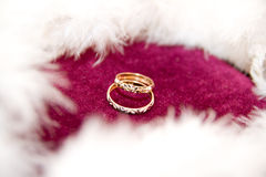 De ringen op de bloemen, in een doos, op een witte stof op speelgoed, kleuren, huwelijksdetails, trouwringen Stock Afbeeldingen