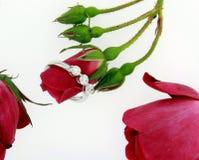 De Ringen van de diamant Stock Afbeeldingen