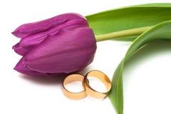 De ringen van de gouden bruiloft Stock Fotografie