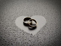 De ringen van de liefde Royalty-vrije Stock Foto's