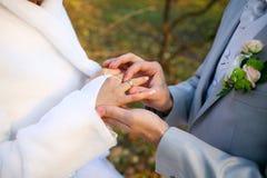 De ringen van huwelijken Royalty-vrije Stock Afbeeldingen