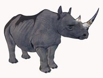De Rinoceros van het beeldverhaal Stock Afbeelding
