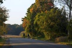 De rit van de fiets in het land Stock Foto's