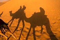 De rit van de kameel Stock Afbeelding