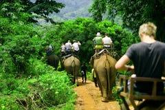 De rit van de olifant royalty-vrije stock afbeeldingen