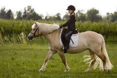 De ritten van het meisje aan Paard Stock Foto