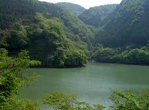De rivier Stock Foto