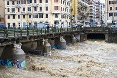 De rivier Stock Fotografie