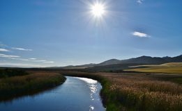 De rivier Royalty-vrije Stock Fotografie