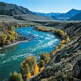 De rivier in bergen Stock Afbeeldingen